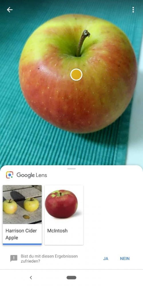 Visuelle Suche über Google Lens - Apfel