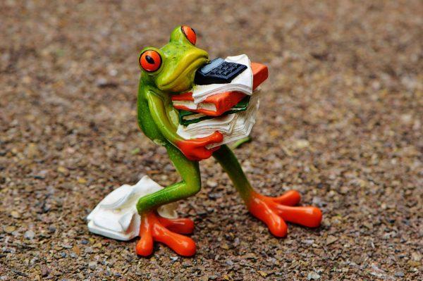 SEO Tool Screaming Frog