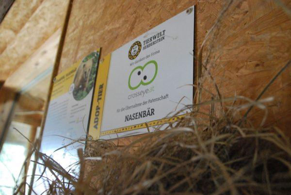 Firmenpatenschaft für den Nasenbären in der Tierwelt Herberstein